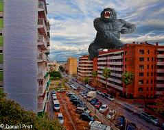 King Kong en la ciudad (dapray) Tags: geostate geocountry kingkong calle coches ciudad perspectiva monstruo gorila animal gigante