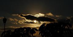 The sun is hiding (brandonplascencia) Tags: sun sunlight sol sombra shadow clouds cloudy calle sky cielo luz light arboles foco yellow amarillo naranja orange circle tree exterior nublado nubes