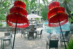 Bali (Manoo Mistry) Tags: nikond5500body nikon tamron18270mmzoom bali indonesia tourism villalumbung seminyak umbrella swimming swimmingpool