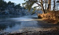 Blauwe Meer - Leggelderveld (henkmulder887) Tags: leggelderveld dwingeloo hoogersmilde gemeentemiddendrenthe natuurmonumenten blauwemeer drenthe holland thenetherlands natuur natur nature natura panorama winter koud glad ijs sneeuw