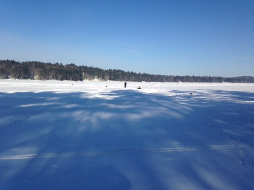 Trickey Pond - www.amazingfishametric.com