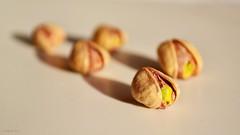 5 Pistachios (Zsofia Nagy) Tags: flickrlounge weeklytheme five seeds pistachio d3100 depthoffield dof tabletop whitebackground 5