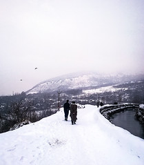 Kashmir (Mehreen Alam) Tags: nature snow winter kashmir photography india