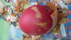 Pestalozzi_Easter 029