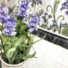 💕💖✨ ولأنك يا الله أكثر قرباً وأرحم عليّ من كل خلقك استودعتك جُل الّذي خبأته في قلبي، استودعتك الأمر المتّبقي ليّ في هذه الحياة .. #Orchidaceae #اوركيد #صباح_الخير #مساء_الخير #رمضان #flower #آمين (Willey 3K) Tags: square squareformat iphoneography instagramapp uploaded:by=instagram