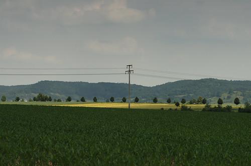 Feld 7