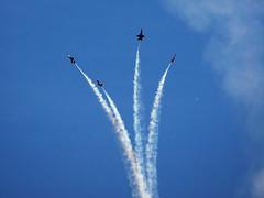 Blue Angels over Seattle (Tony Cyphert) Tags: seattle jets 75300mm f18 blueangels olympusem1