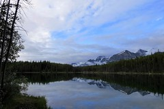 Mirrored Shore (Patricia Henschen) Tags: morning clouds cloudy boreal forest lake lac herbert banff banffnationalpark nationalpark parkscanada parks parcs mountains mountain rockymountains rockies rocky northern canadian canada canadianrockies reflection reflections water lakelouise alberta icefieldsparkway bowrange fog