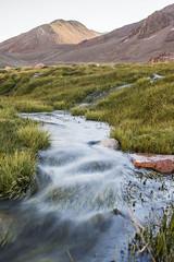 Vega 3 (niNobono) Tags: conay vega quebrada agua rìo river afluente huasco rìohuasco rìovaleriano atacama vallenar andes