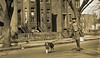 roller skating in the streets of DC Mar 1922 LOC05898u (SSAVE w/ over 6.5 MILLION views THX) Tags: 1922 washingtondc boy rollerskates dog collie