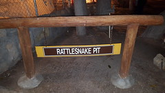Rattlesnake Pit (cjacobs53) Tags: jacobs jacobsusa 116picturesin2016 scavenger hunt annual yearly rattlesnake snake venomous poison