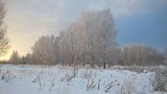 Зима. Обеденный закат.