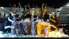 Décoration lumineuse : En panne de lumière ? (Mucha Watson) Tags: lights guirlandes luminaires décorations lumineux animaux