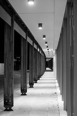 Trento - Le Albere (drakkar6163) Tags: trento muse albere blackandwhite night monochrome trentino trentinoaltoadige black white renzo piano