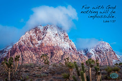 0121 IMG_9366 (JRmanNn) Tags: redrockcanyon springmountain snowfall snowmountain lasvegas