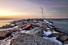 A New Day....A new Beginning (Alex Bruce Photo) Tags: beach sunrise lakeontario rocks tree morning toronto thesix