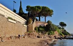 Golfe Juan, plage du chateau de l' Horizon (thierry llansades) Tags: cannes golfe juan golfejuan bocca plage beach naturisme chateau mirandole horizon batterie baignade baigneuse naturiste mediterranée cote cotedazur azur