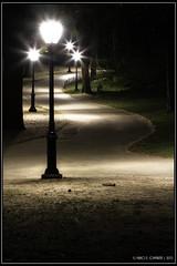 "Central Paths... <a style=""margin-left:10px; font-size:0.8em;"" href=""http://www.flickr.com/photos/66444177@N04/18064734653/"" target=""_blank"">@flickr</a>"