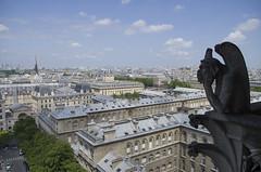 Gárgola (Notre Dame) (borrex84) Tags: paris catedral notre dame francia gargola piedra pensativa