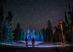 Stars (lv_los) Tags: longexposure nightphotography camping trees nature night forest stars landscape outdoors utah nikon outdoor astrophotography serene lighttrails cedarbreaks dixienationalforest d7100