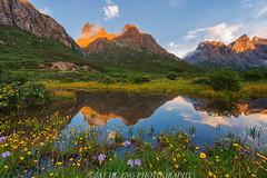 Yaonv Lake, Nianbaoyuze (Jaykhuang) Tags: china reflection sunrise wildflowers 青海 tibetanplateau qinghai 青藏高原 geopark snowmountains 年宝玉则 nianbaoyuze bayanharmountains jayhuangphotography 巴颜克拉山脉