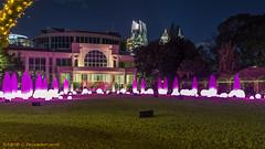 Atlanta, GA: Atlanta Botanical Garden Garden Lights (Christmas) Exhibit (nabobswims) Tags: atlanta botanicalgarden christmaslights georgia lightroom nabob nabobswims sonya6000 us unitedstates sel18105g
