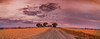Apocalyptic Sunset (Anthony's Olympus Adventures) Tags: adelaide adelaideplains southaustralia sa australia christmas sunset cloud sky colour sun wow nice beautiful stunning xmas freeling farm country paddock landscape panorama panoramic scene blue olympusem10 olympus olympusomd sundown farmland colourful color postprocessing editing lightroom red purple magenta apocalypse effect spectacular amazing