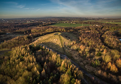 Bold Forest Park (sammys gallery) Tags: bold woods forest countrypark countryside trees sthelens dronecamera aerial sainthelensdistrict england unitedkingdom gb