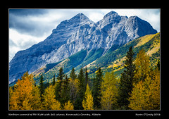 Northern summit of Mt. Kidd with fall colours, Kananaskis Country, Alberta (kgogrady) Tags: landscape alberta canada fujinon morning highway40 mountain mtkidd mountkidd fujifilmxe1 fujifilm photosofalberta nopeople picturesofalberta kananaskis noone xe1 xf55200mmf3548ois westerncanada canadianlandscapes canadianrockies 2016 albertalandscapes canadianmountains ab canadianrockieslanscape colorful fallcolours colourful cans2s fallcolors rockymountains rocky rockies