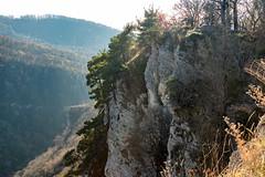 Eagle Rocks (Орлиные скалы) (DVchigarev) Tags: eagle rocks sochi russia subtropical outdoor nature mothernature day november autumn canon 70d 24105 l usm