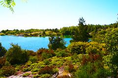 Serra da Estrela   Estrela mountains   Montagnes Estrela   Montagne Estrela   Sierra de la Estrella   -- (Antnio Jos Rocha) Tags: portugal serradaestrela valederossim serra estrela montanha albufeira barragem gua rvores natureza lago cores verde azul paisagem