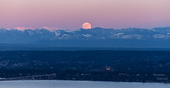 Smothered in alpenglow. (Brendinni) Tags: moon wolfmoon cascades 520floatingbridge trees valley landscape alpenglow pink blue green orange luna wow