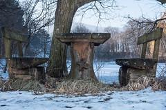 Frostige Jausenstation (tomhuizi) Tags: frost sunny sonnig jausenstation bank tisch teich schnee winter mirrorless brotzeit table break verlassen einsam lonely spiegellos lake