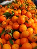 Freshness Healthy Eating Food And Drink Food Abundance Orange Color Vegetable Fruit No People Market Large Group Of Objects Retail  Heap Close-up Outdoors Day מייפוד מייתרשיחא מייאייפון7 (dinalfs) Tags: freshness healthyeating foodanddrink food abundance orangecolor vegetable fruit nopeople market largegroupofobjects retail heap closeup outdoors day מייפוד מייתרשיחא מייאייפון7