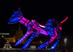 Neon Dog - Amsterdam (Tony McLean) Tags: ©2016tonymclean amsterdam thenetherlands holland streetphotography streetscenes leicam240 leica75summilux