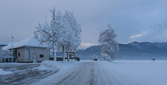 Cerknica (happy.apple) Tags: slovenia si cerknica slovenija morning church road winter zima sneg jutro cesta
