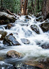 Yosemite Stream (Maxinux40k) Tags: 2016 afs35mmf18ged california d810 december landscape mitchellcipriano nationalpark nature nikkor nikon outdoors trees water winter yosemite outdoor rocks stream