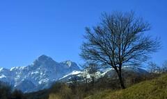 Corno Grande (2912 m) e Corno Piccolo (2655 m) (giorgiorodano46) Tags: gennaio2017 2017 january janvier giorgiorodano nikon gransasso abruzzo italy appennino apennines