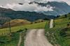 Lonely Roads (stefannik) Tags: green road roads nature landscape awesome adventure travel fun nikon beautiful grass mountain drive