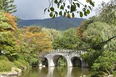 Bulguksa, Gyeongju, South Korea (Sekitar) Tags: asia eastasia southkorea korea south bulguksa unesco gyeongju bridge jematan pond earthasia