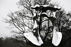 ''Not Vital'' (littlestschnauzer) Tags: ysp yorkshire sculpture park art not vital 2017 january winter wintry large scale shiny mirror finish nikon d7200 outdoor trees nature exhibit display