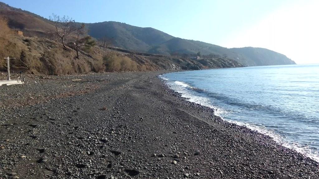 lesbos sunshine coast