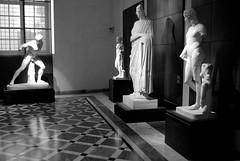 Rome 2010 1117