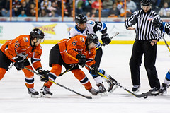 "Missouri Mavericks vs. Wichita Thunder, February 3, 2017, Silverstein Eye Centers Arena, Independence, Missouri.  Photo: John Howe / Howe Creative Photography • <a style=""font-size:0.8em;"" href=""http://www.flickr.com/photos/134016632@N02/32713947735/"" target=""_blank"">View on Flickr</a>"