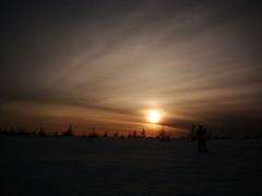 Snowshoeing at dusk (Orion 2) Tags: snowshoeing backcountry bog wilderness snow winter borealforest newfoundlandandlabrador canada