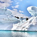 Glacier Cruise...Greenland...