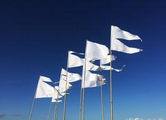 Witte vlag - White flag (E-wout) Tags: white amsterdam wit ijburg blijburg vinex centrumeiland urbancampingsite