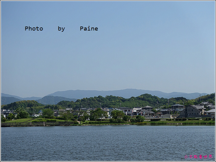 和歌山大池遊園-平池綠地公園 (30).JPG