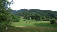 valle de la Rosemontoise,  La Planche Le Prtre (Claudie K) Tags: vert prairie paysage franchecomt vaches troupeau vescemont laplancheleprtre vallerosemontoise plainot