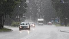 rainy days (21984) (rooibusch) Tags: tschechien desná